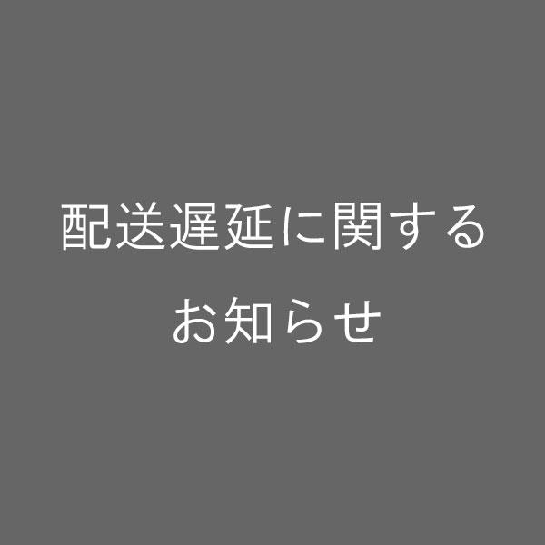 【お知らせ】九州地方の大雨の影響による配送遅延について