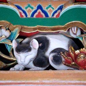 「眠り猫」に秘められた意味とは?